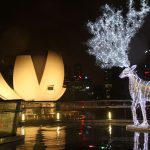 Christmas 1 : Credit to Chic Voyage Travel